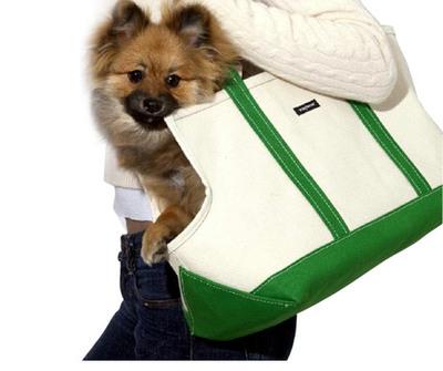 Green_boat_dog_bag
